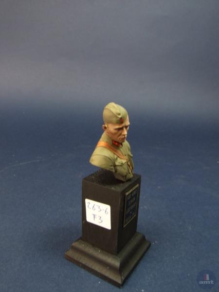 amt-2017-figuras-figures-540